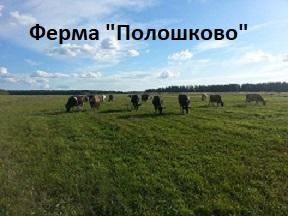 """Ферма """"Полошково"""""""