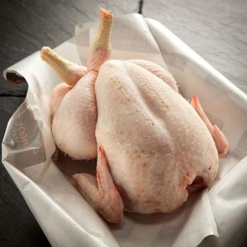 Мясо домашней курицы