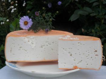 Сыр козий.
