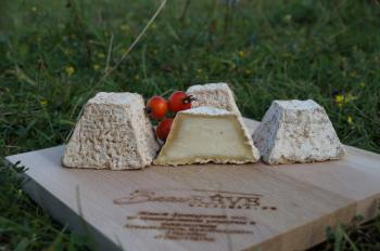 Сыр «ПИРАМИДА»