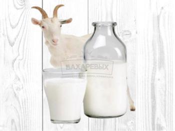 Молоко парное козье