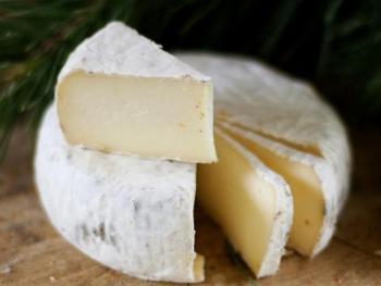 """Сыр с белой плесенью """"Бри-бри"""""""