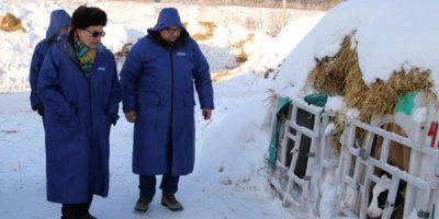 ТВОЙПРОДУКТ: Урал сможет дарить потребителям благородные сыры