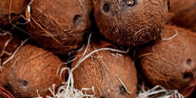 ТВОЙПРОДУКТ: Идем за кокосом