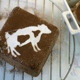 Австралия: в рацион коров входит шоколад