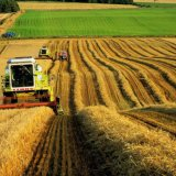 Сельскохозяйственные земли России: игра по правилам ВТО