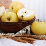 Замочить яблоки – нехитро