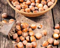 Фундук или лесной орех – как правильно?